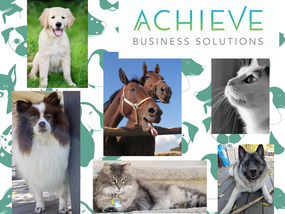 Help is Here for Pet Sitting Business Owners