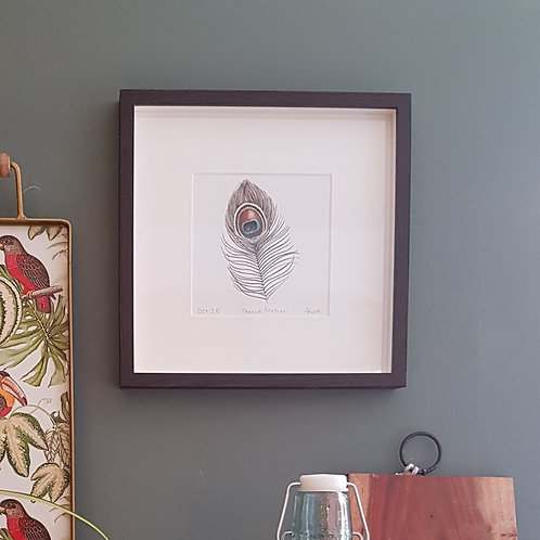 Peacock Feather Giclee Print by Abigail Lock Design