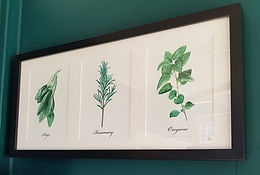 Set of three herb print 1