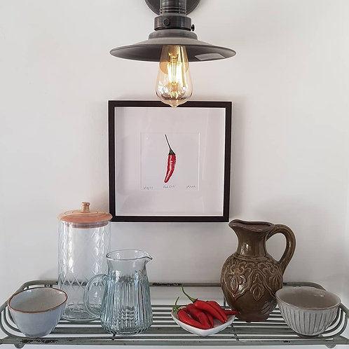 Chilli Pepper Giclee Print by Abigail Lock Design