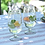 Thumbnail: Star Wineglass