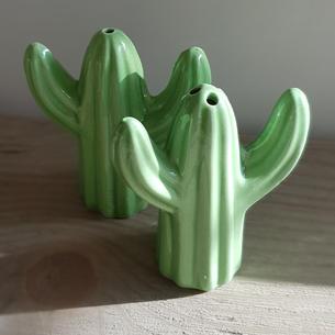 Cactus Salt & Pepper £4