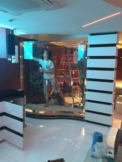 Qatar aquarium Prep for Install