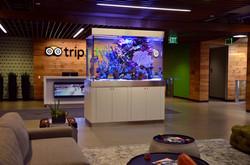 Trip Advisor Headquarters
