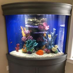 custom aquarium decorations