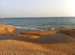 Freshwater Beach