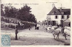 ST.-MENOUX-Bénédiction-des-troupeaux