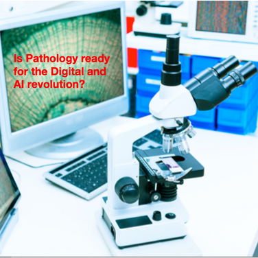 Is Pathology ready for the Digital and AI revolution?