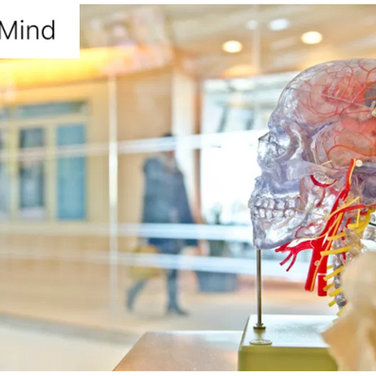 CoMind and the future of Non-Invasive Neural Interfaces