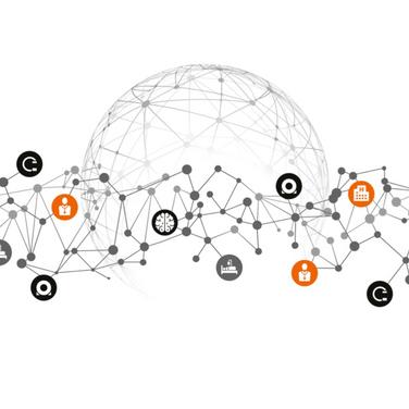 Custodians,Enablers,Arbitrageurs, Innovators: the key principles for success in Digital Health