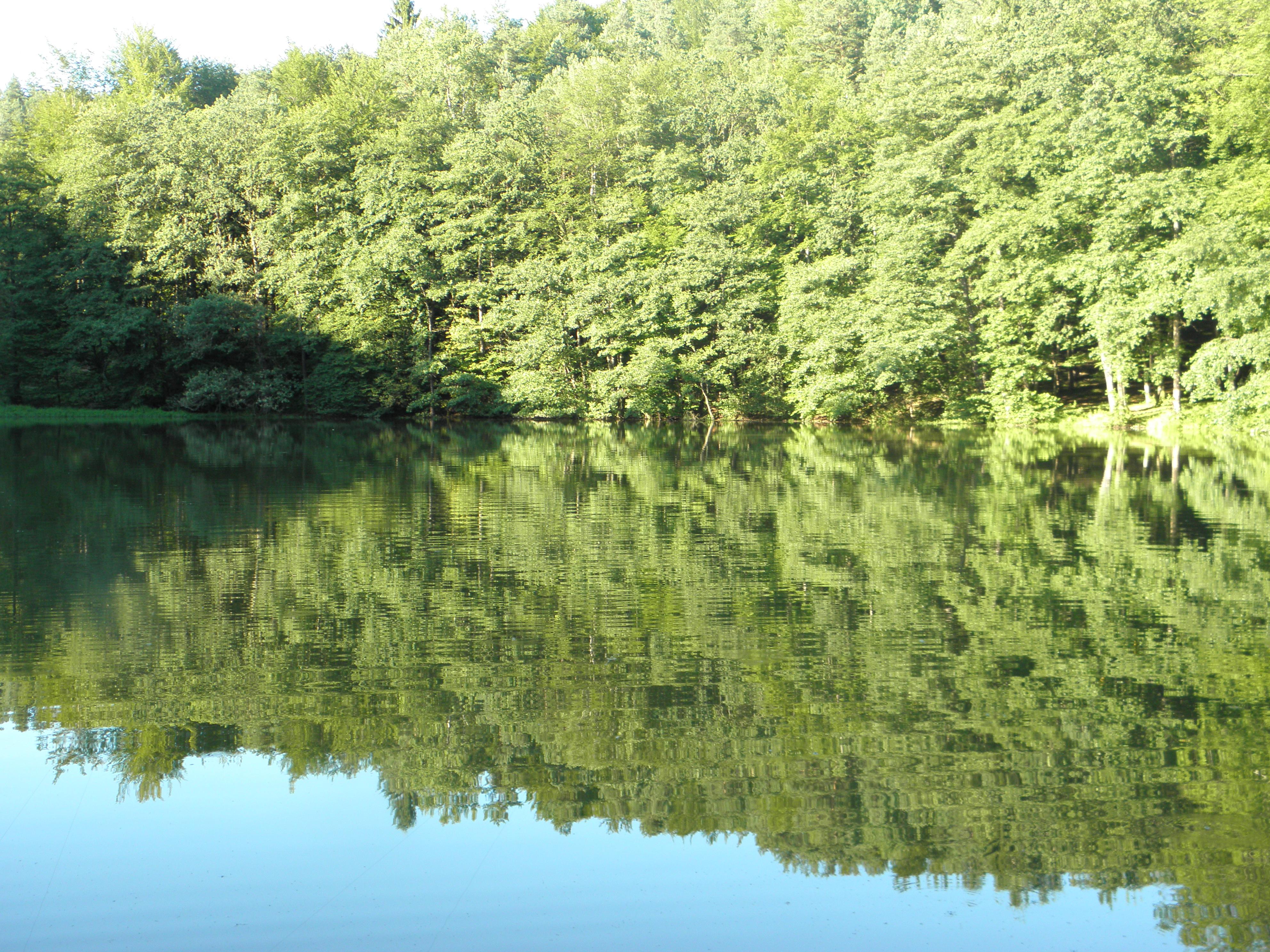 Inkognito Lake I