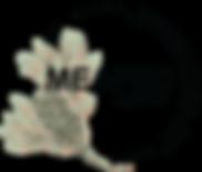 MEAFEC logo 2019 colour.png