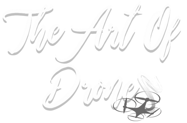 The Art of Drones