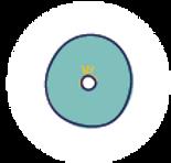 icone_domiciliation