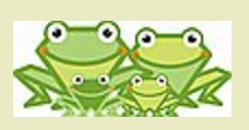janm frogs