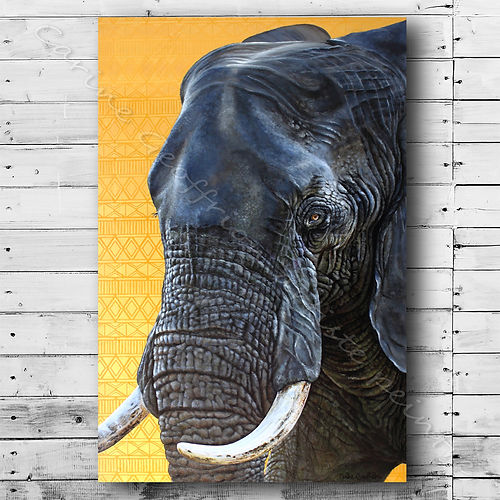Peinture éléphant artiste peintre animalier animaux