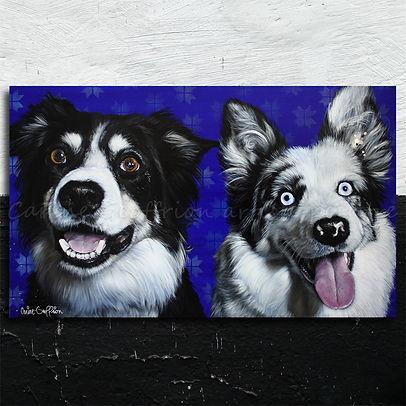 Peinture chiens border collie artiste peintre animalier québécoise dogs painting