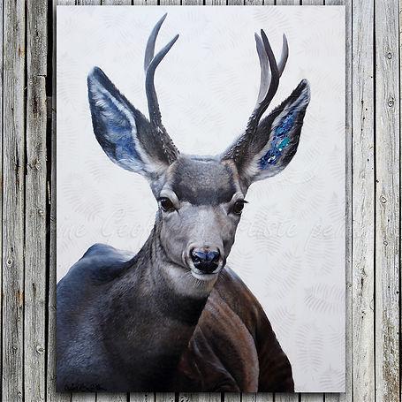 Oeuvre toile peinture cerf deer artiste peintre animalier québécoise