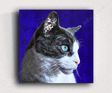 Peinture chat cat artiste peintre animalier québécoise