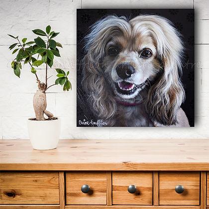 Peinture chien artiste peintre animalier québcoise cocker spaniel