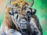 Artiste peintre animalier toile bison