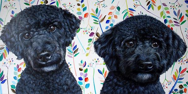 Peinture chiens labradoodle cobber dogs artiste peintre animalier québcoise