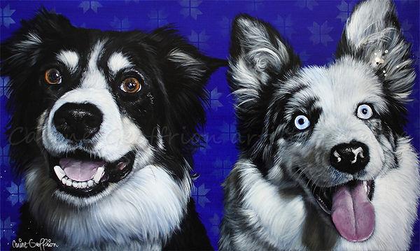 Peinture chiens border collie oeuvre artiste peintre animalier québécoise
