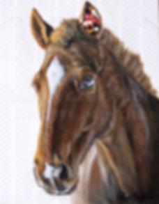 Toile cheval artiste peintre horse