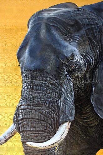 Toile éléphant artiste peintre animalier québécoise
