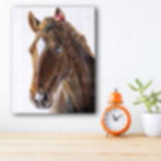 Peinture cheval horse artiste peintre animalier