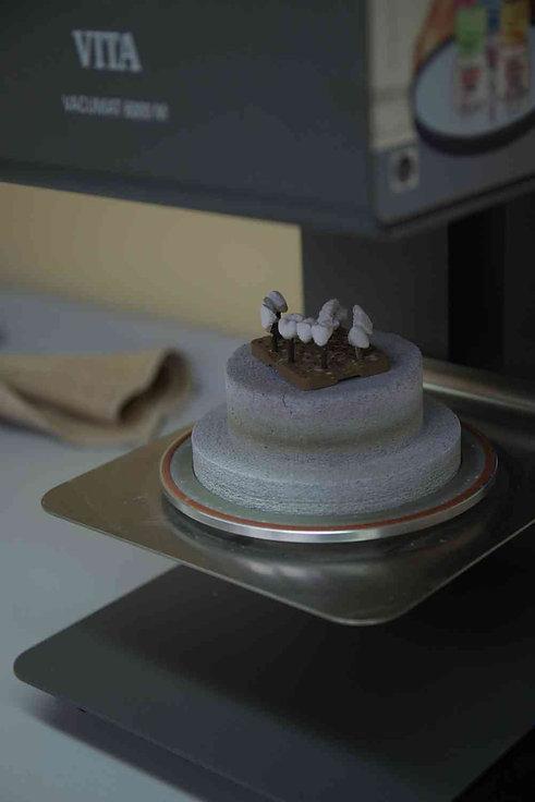 Практический Курс для зубного техника по изготовлению коронок и мостов металлокерамика, леопольд Черномаз. курс для начинающего техника