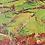 Thumbnail: Rolling Autumn Hills