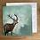 Thumbnail: Greeting Cards - Fox Pack
