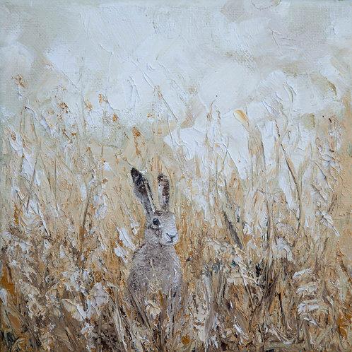 Hare II