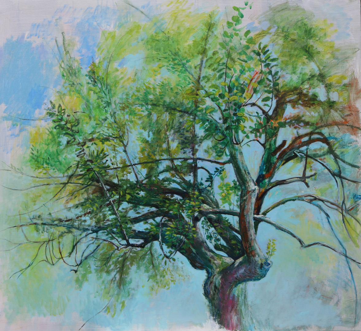portrait d'arbre