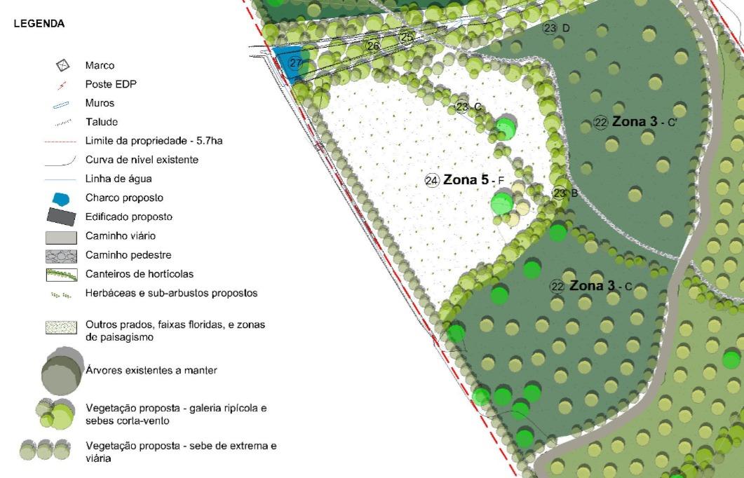 Zoom na Zona 5 F: são 3.900 m2 que vão ajudar a regular as dinâmicas hídricas deste território, rumo à zona húmida.