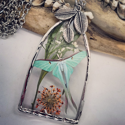 Soldered Glass with Luna Moth & Dried Floral