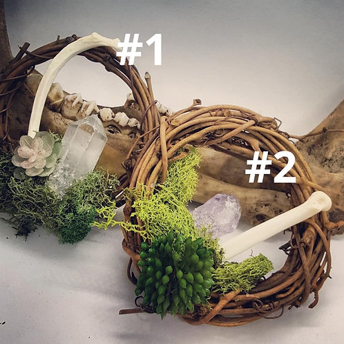 "3"" Grapevine Wreath with Bone, Crystal & No Kill Succulents"