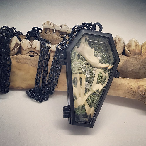 Small Coffin with Mice Bones, Moss & Rhinestones on Long Black Chain