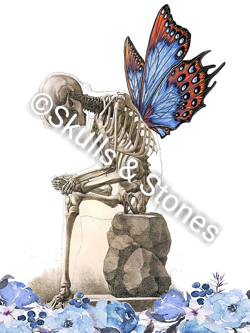 Sitting Butterfly Skeleton Print - Matted