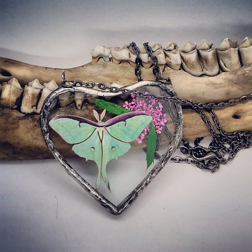 Soldered Glass Heart with Luna Moth