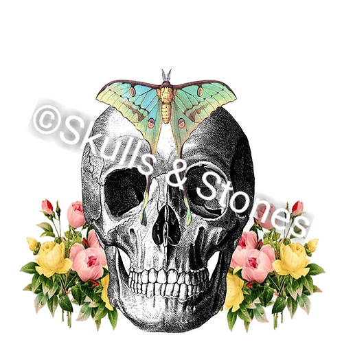 Vintage Skull with Flowers and Moth - Matted