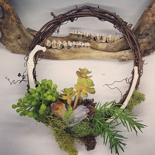 "6"" Grapevine Wreath with Bone, Amethyst & No Kill Succulents"