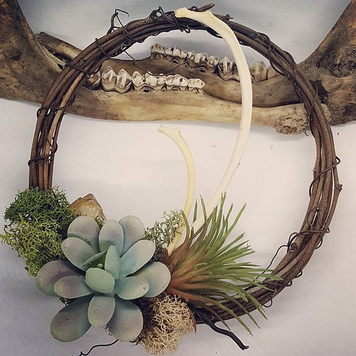 """6"""" Grapevine Wreath with Bone, Citrine & No Kill Succulents"""