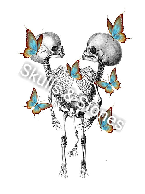Vintage Skeleton Twins & Butterfly Print - Matted