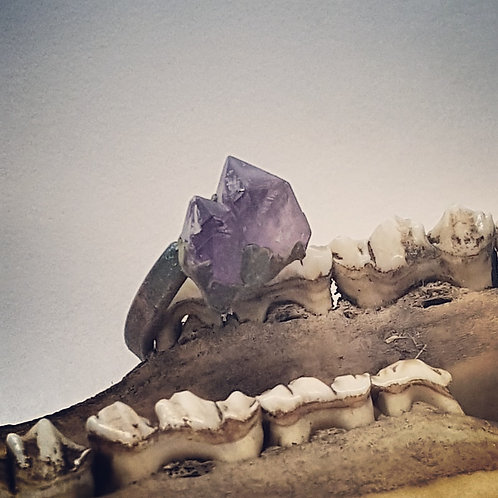 Electroformed Adjustable Amethyst Double Point Ring