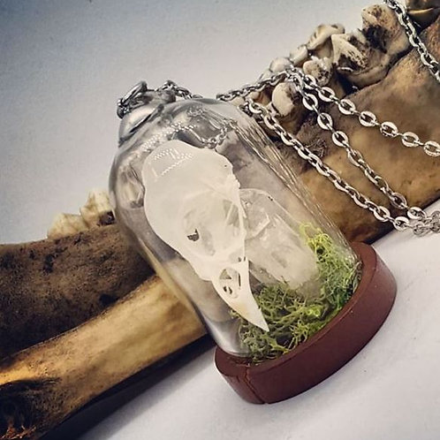 "Bell Jar with Bird Skull & Quartz Point on 20"" Chain"