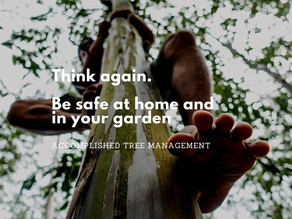 Staying Safe at Home … and in your Garden