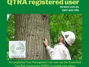 The Quantified Tree Risk Assessment Method