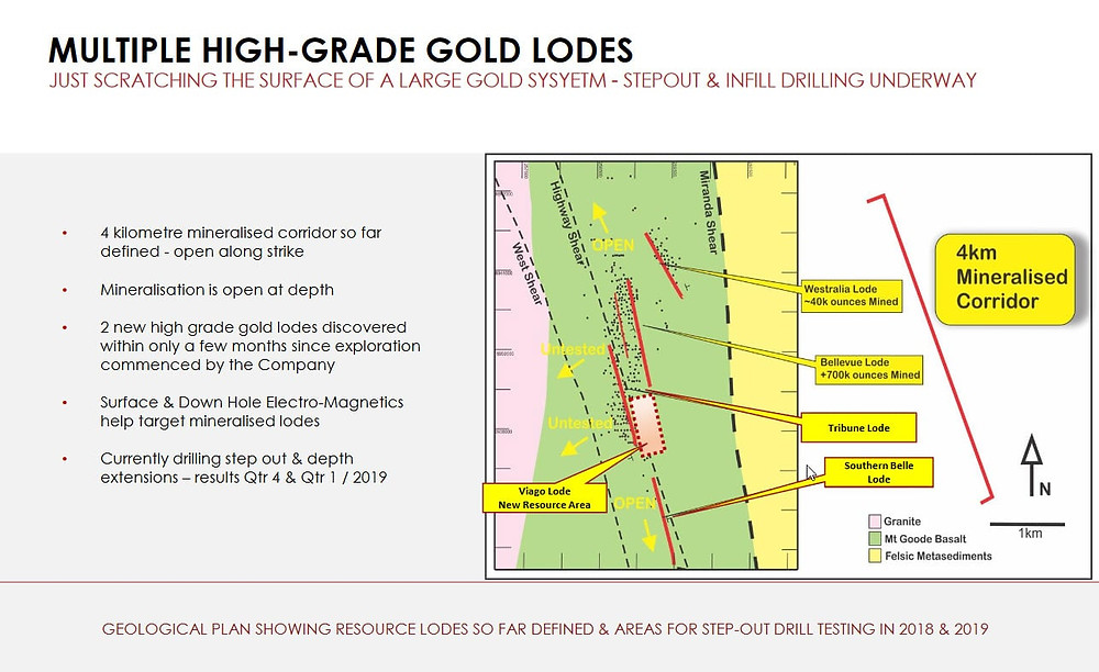 Plan view of the multiple lodes.